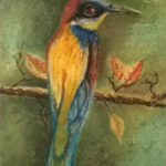 European Bee Eater Bird painting/drawing in Soft Pastel