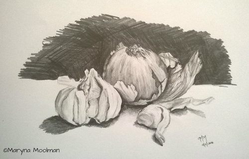 Garlic and Onion drawing in Graphite