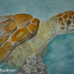Sea Turtle paiting in Watercolor