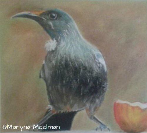 Tui and Apple painting/drawing in Soft Pastel